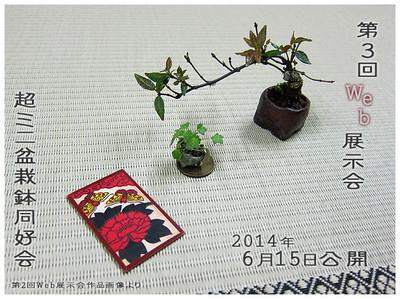 2014web_5